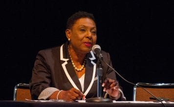 Diaspora vital to creative development, says Jamaica's Culture Minister