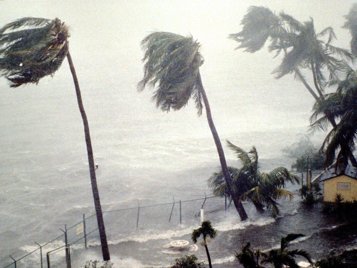 University Of Miami Hurricanes >> Six hurricanes, 12 storms expected this season