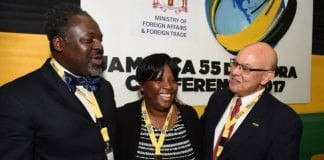 Diaspora Technology Task Force - Caribbean National Weekly News