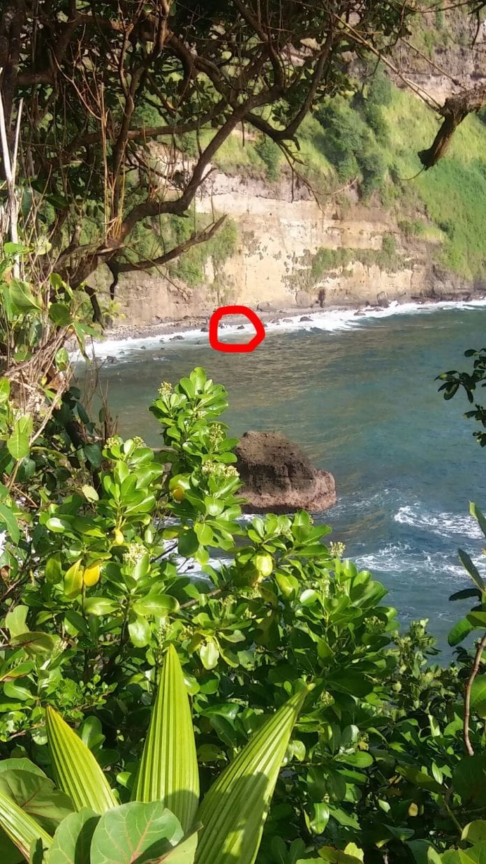 Site of Dominican automobile accident - Caribbean National Weekly News