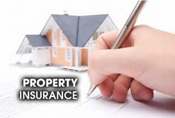 Property insurance is a necessary item to cover renters and homeowners from risk and loss - Caribbean National Weekly News
