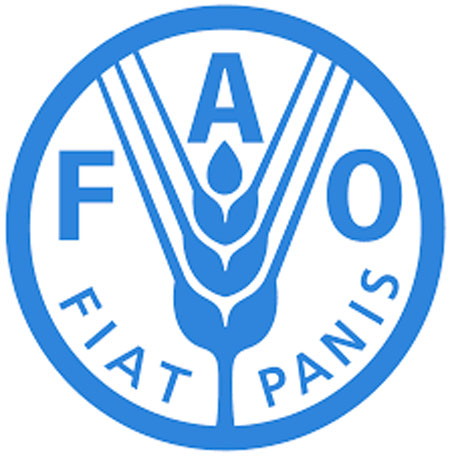 FAO says immediate food production needed in Dominica