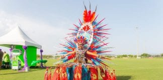 Miami Carnival – Junior Carnival costume results