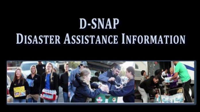 DSNAP food assistance resumes in Broward, Miami-Dade
