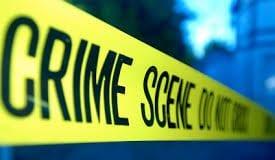 Jamaica crime rate