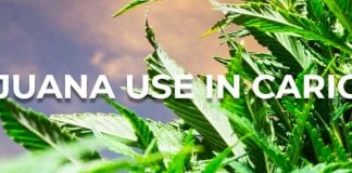 marijuana commision