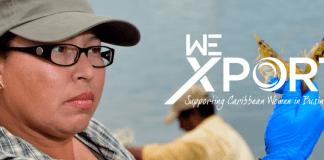 WE-Xport