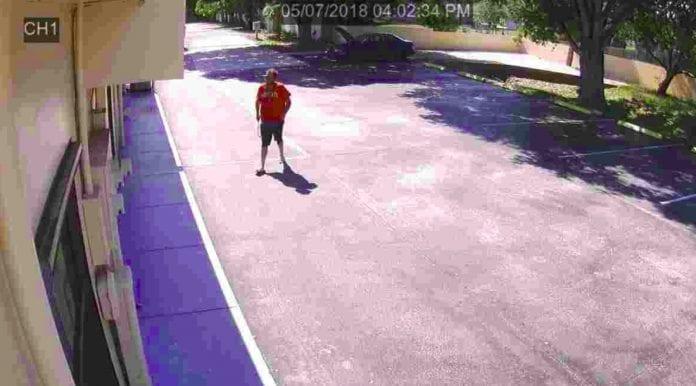 Port St. Lucie vandalism