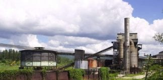 rum manufacturers